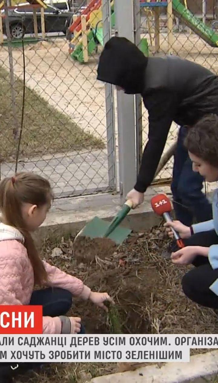 В Киеве даром раздавали саженцы сосен всем желающим