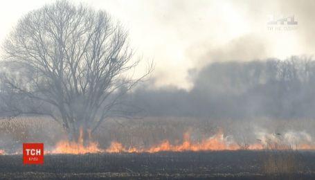 Крупный пожар произошел на окраине Ровно