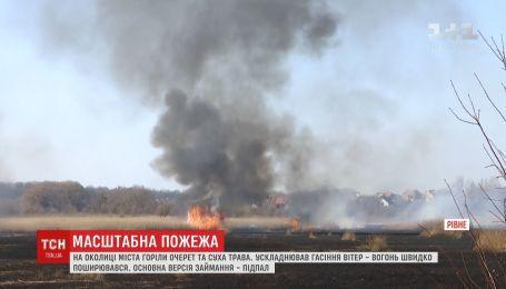 Камыш и сухая трава горели на окраине Ровно