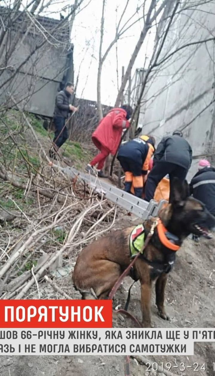 В Днепре пес нашел женщину, которая просидела в колодце двое суток