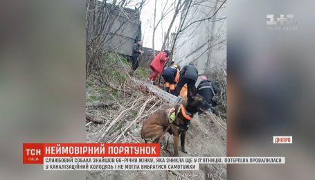 У Дніпрі пес знайшов жінку, яка просиділа в колодязі дві доби