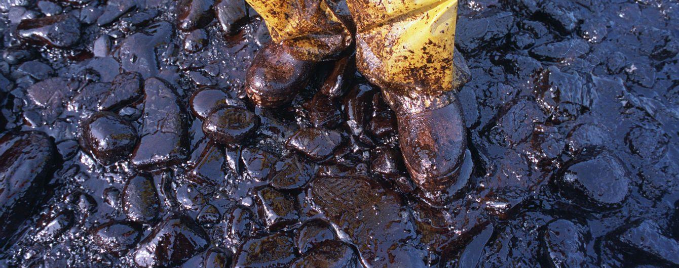 В России арестовали четырех фигурантов дела о загрязнении нефти, еще двое объявлены в розыск