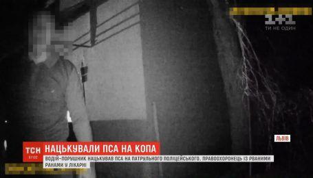 У Львова водитель-нарушитель натравил пса на полицейского