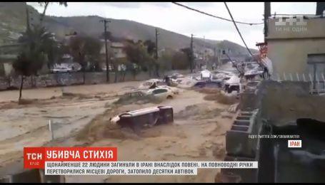 По меньшей мере 17 человек погибли от наводнения в иранском городе Шираз
