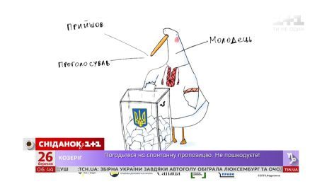 """Министерство юстиции представило дебютный ролик кампании """"Гусь идет на выборы"""""""