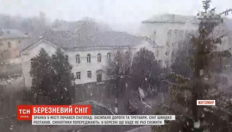 Березневий сніг випав у Житомирі