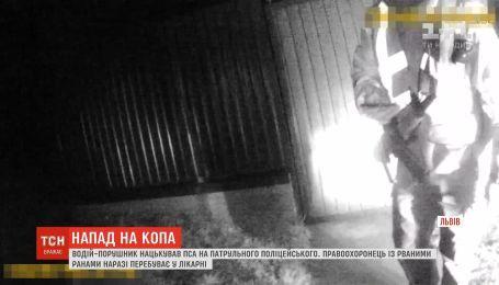 """Водитель """"евробляхи"""" нарушил ПДД и натравил пса на полицейского на Львовщине"""