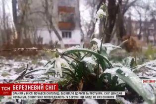 Прощальний поцілунок зими: Житомир засипало лапатим снігом