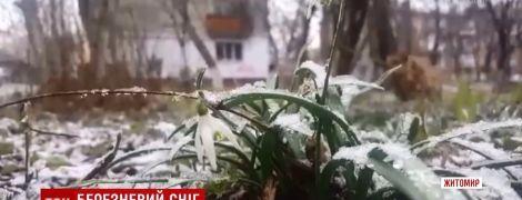 Прощальный поцелуй зимы: Житомир засыпало хлопьями снега