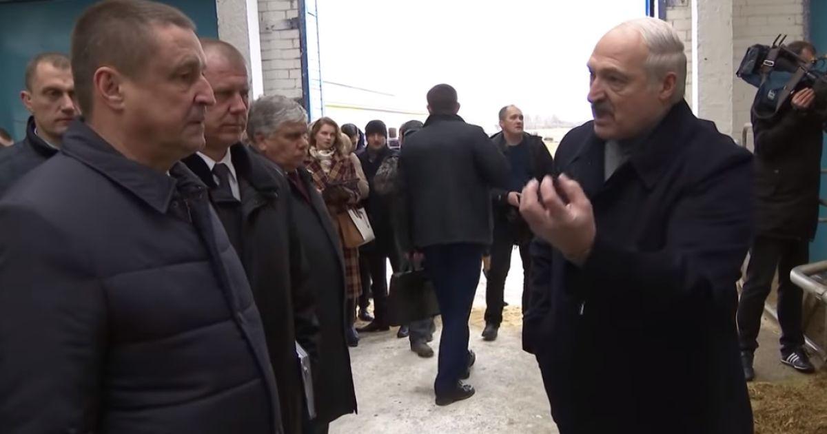 Освенцим у корівнику: Лукашенко звільнив губернатора через худобу