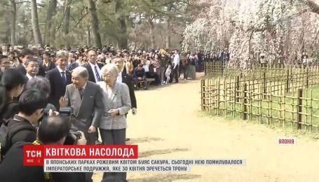 Императорская чета любовалось цветением сакуры в Японии