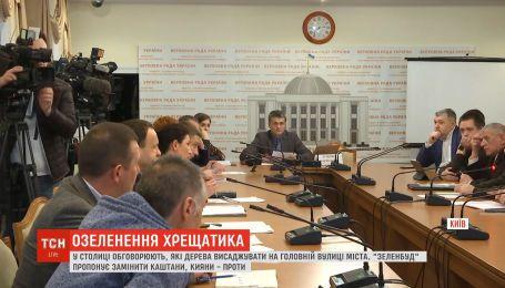 В Верховной Раде на спасение киевских каштанов собрался целый парламентский комитет