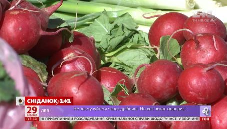 В Украине стремительно дешевеет редис - Экономические новости
