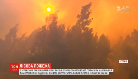 Масштабні пожежі охопили іспанські ліси