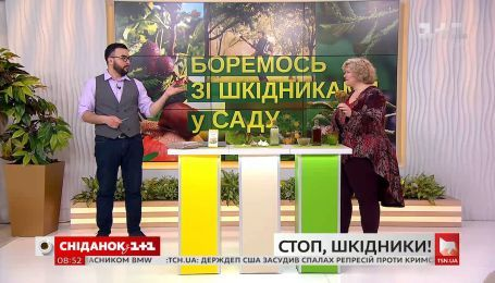 Наталія Підлісна розповіла про органічні й хімічні способи боротьби із садовими шкідниками