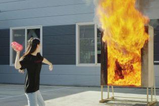 І красива, і корисна: корейці створили вазу-вогнегасник