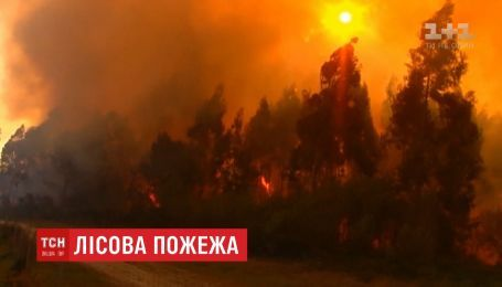Вогонь від лісових пожеж в Іспанії наблизився до автошляхів і будинків