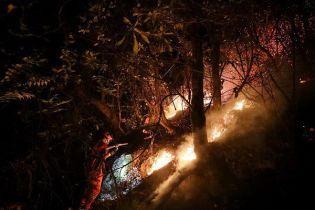 У Китаї в масштабній лісовій пожежі загинуло щонайменше 30 осіб