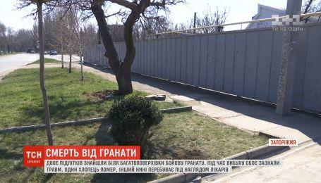В Запорожье двое подростков подорвались на гранате