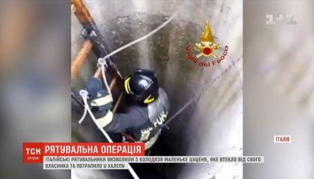 Итальянские спасатели вытащили из колодца щенка