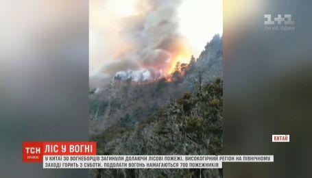 У Китаї загинули 30 пожежників, долаючи лісові пожежі в горах