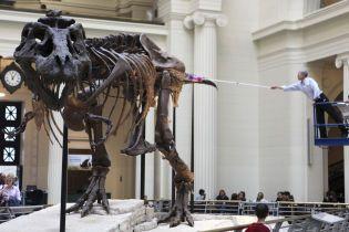 """Учені знайшли давнє """"поле смерті"""" – воно вказує на """"провину"""" астероїда у зникненні динозаврів"""