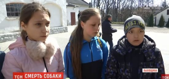 На Львівщині діти звинуватили дорослих у вбивстві собаки, якого вони затягли до школи