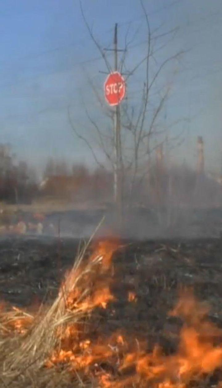 Поджигатели сухостоя почти дотла сожгли два дома в Житомирской области