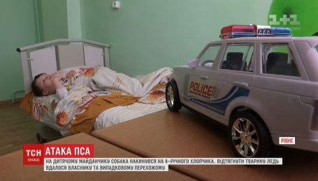 Питбуль напал на 4-летнего мальчика в Ровно