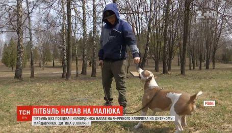 В Ровно пес вцепился в 4-летнего мальчика