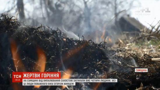 На Сумщині при випалюванні сухостою згоріла 81-річна жінка