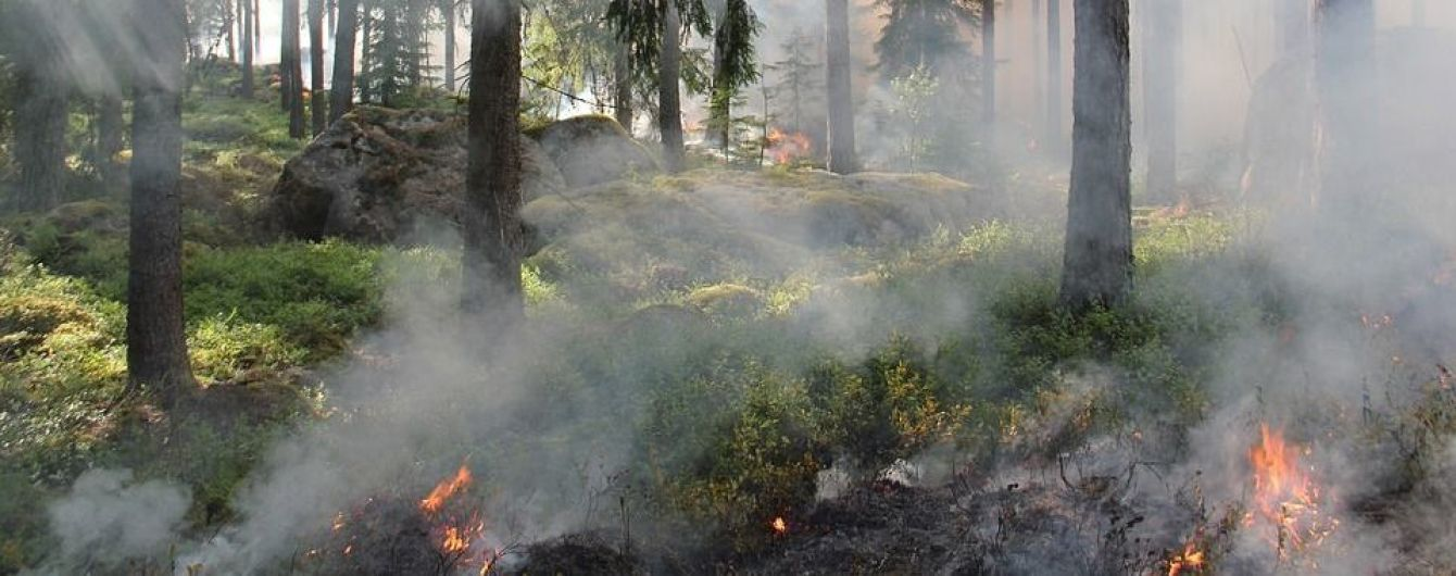 Чрезвычайники предупреждают о пожарной опасности