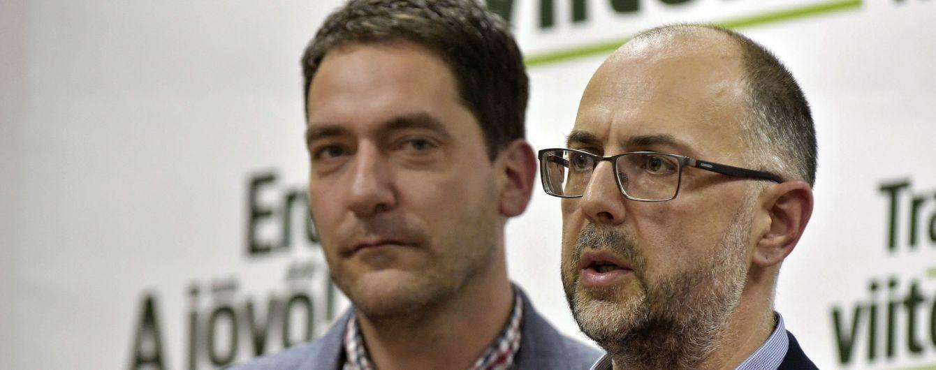 Лидер союза венгров в Румынии обвинил посла Украины во лжи