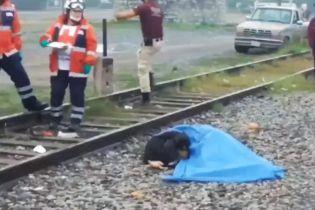 Ще один Хатіко: у Мексиці пес охороняв тіло свого загиблого господаря