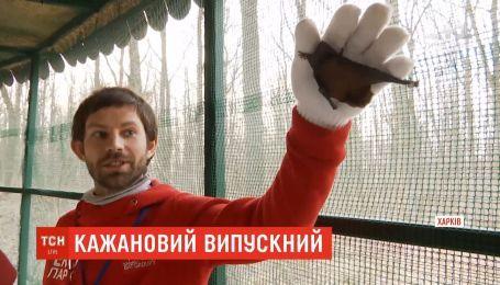 В Харькове более двух тысяч летучих мышей выпустили на свободу после длительного лечения
