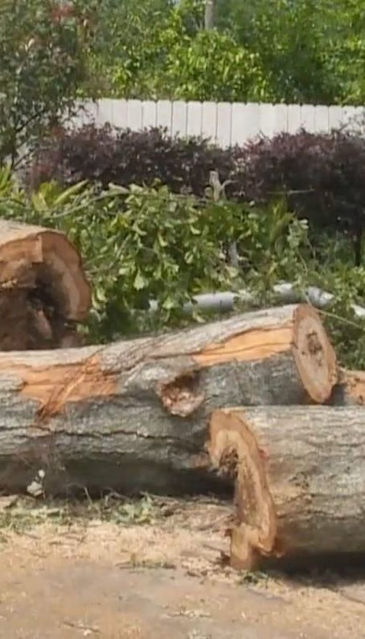 Американським штатом Луїзіана пройшовся потужний ураган