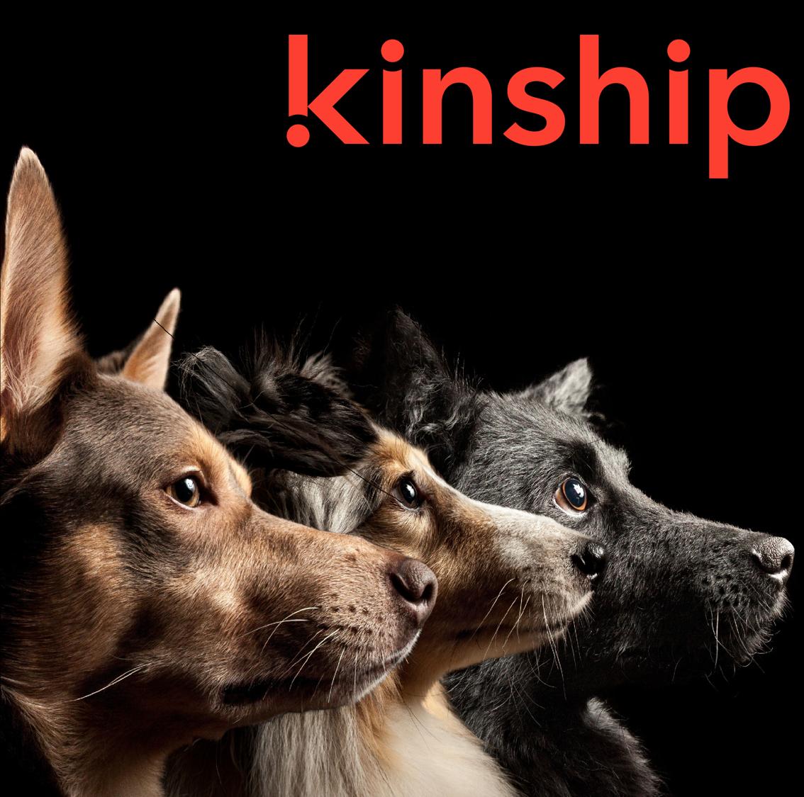 Kinship_реклама