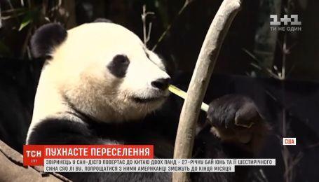Звіринець в Сан-Дієго повертає до Китаю двох панд