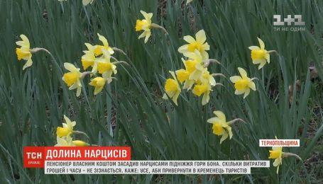 Долина нарцисів: на Тернопільщині пенсіонер висадив десять тисяч цибулин на підніжжі гори
