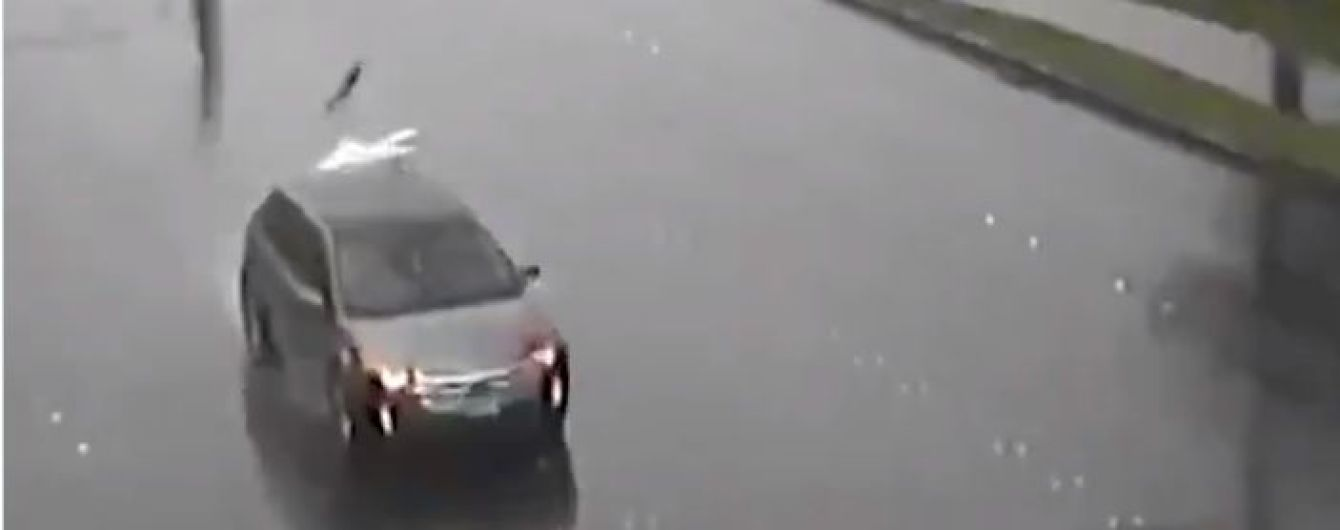 Жуткое видео: в США больше десятка электростолбов упали на дорогу и разбили ехавшую мимо машину