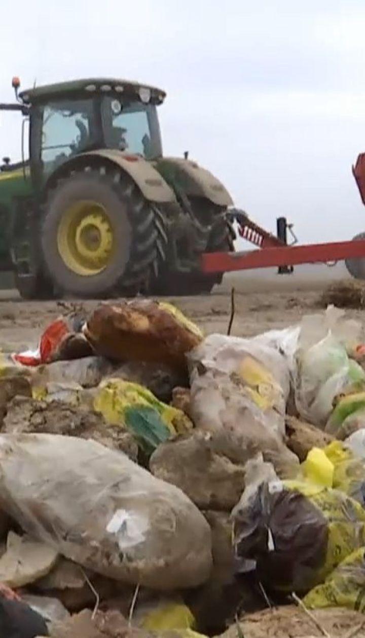 """У трассы """"Киев-Чоп"""" неизвестные выбросили сотни буханок хлеба"""