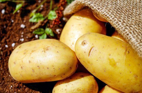 Картопля дешевшає і час робити зимові запаси: як обрати правильний овоч