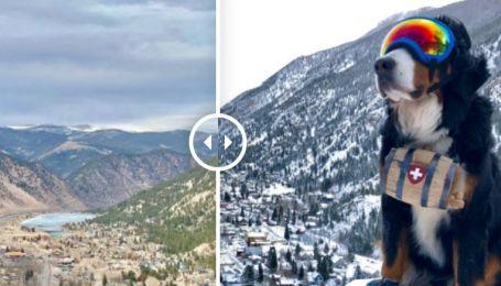 """В американському Колорадо зима за один день змінила літо: примхи бурі-""""чудовиська"""" у фото до та після"""
