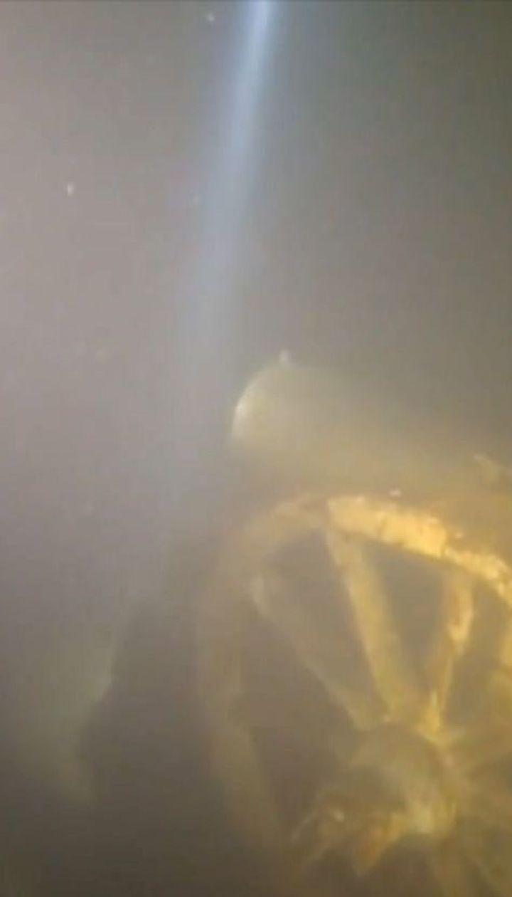 В Малине хотят выкачать озеро с уникальным подводным музеем