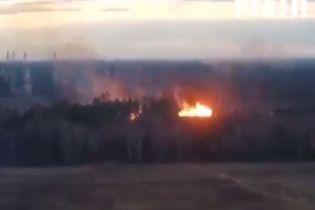 """Біля Москви масштабно спалахнули ліси - під загрозою національний парк """"Лосиний острів"""""""
