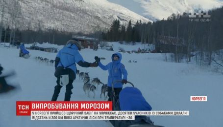 Участники забега с упряжками преодолели расстояние в 300 километров в Норвегии