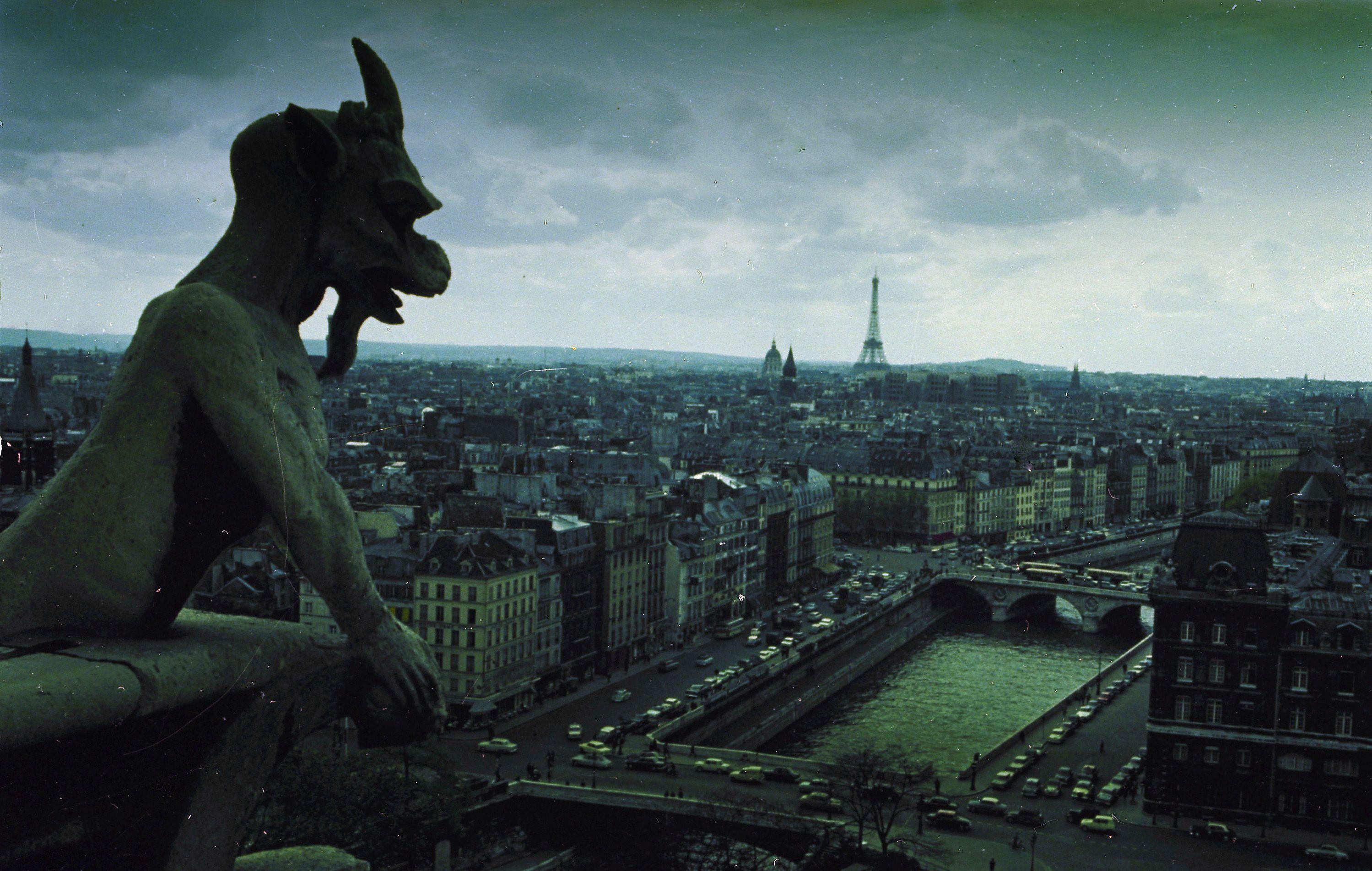 Архівні фото собору паризької богоматері_5