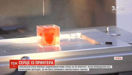 Ізраїльські вчені вперше надрукували живе серце на 3D-принтері
