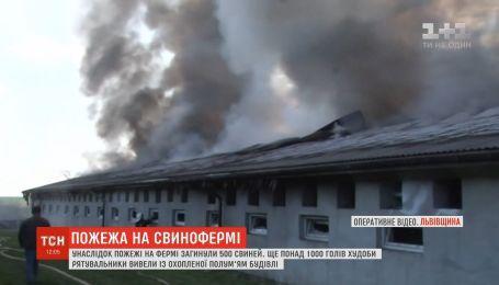 На Львівщині горіла свиноферма: загинуло 500 тварин