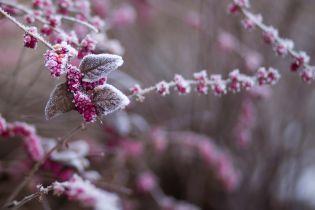 Новая неделя принесет Украине первые снега и заморозки. Прогноз погоды до 23 сентября